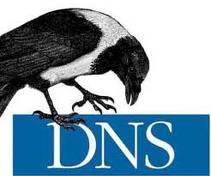 DNS nedir? DOMAIN NAME SYSTEM (domain isim sistemi)